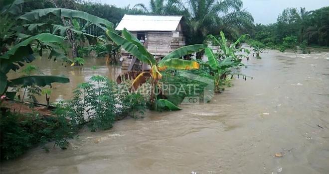 Banjir Bandang menerjang Desa Sungai Toman, Kecamatan Mendahara Ulu (Menhul), Kabupaten Tanjab Timur.