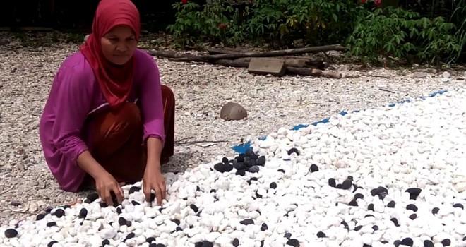 Hamsiah menjual batu alam putih dan hitam dari bekas lokasi tambang PETI di Jalan Lintas Sumatera.