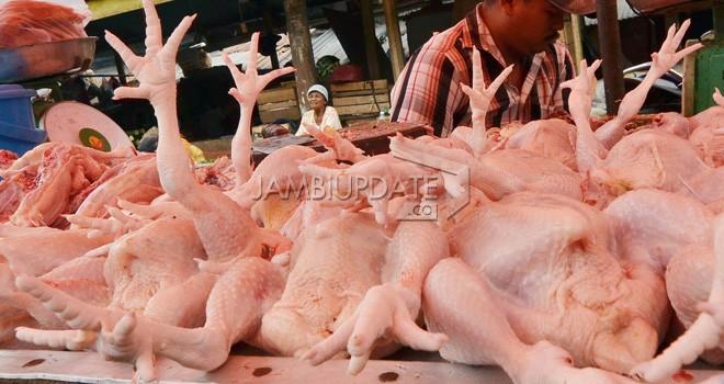 Daging Ayam di Pasar Angso Duo. Foto : Dok Jambi Update