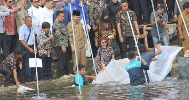 Menteri Kelautan dan Perikanan, Susi Pudjiastuti saat mengankat Jaring di Danau Kerinci. Foto : Gusnadi / Jambiupdate