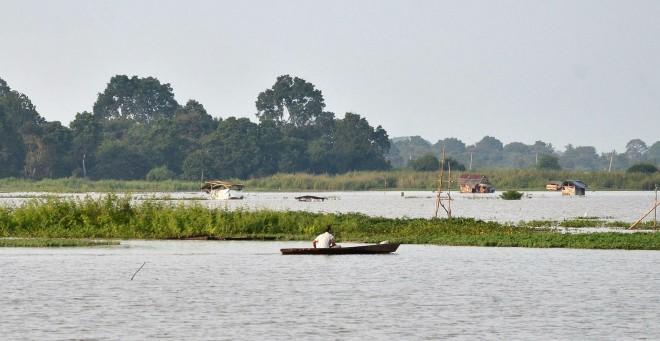 Meluapnya Sungai Batanghari menyebabkan beberapa lahan sawah di Kota Jambi turut terendam, termasuk di Tanjung Sari, Jambi Timur. Petani padi Kota Jambi terpaksa menunda masa tanam. Foto : M Ridwan / Jambi Ekspres
