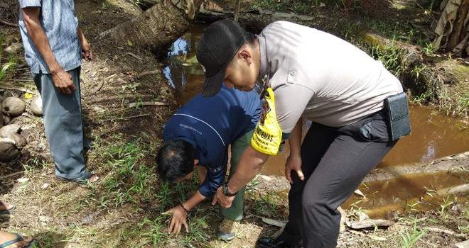 BKSDA, Babinsa, Babinkamtibmas dan masyarakat langsung turun melihat jejak harimau. Foto : Gatot / Jambiupdate
