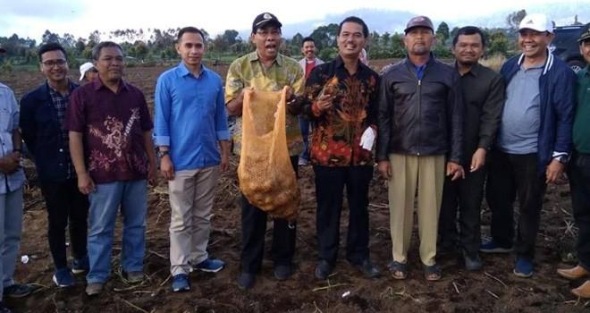 Staf Khusus Pimpinan DPR RI Dipo Nurhadi mengunjungi lahan petani kentang Kayu Aro. Foto : Ist