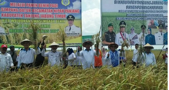 Bupati dan Gubernur Panen Benih Padi di Simpang Datuk. Foto : Ist