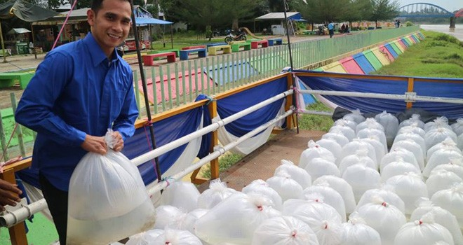 Dipo Nurhadi Ilham menyerahkan bibit ikan untuk masyarakat Sarolangun. Foto : Ist
