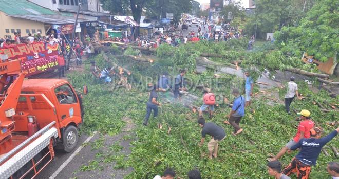 Petugas Dinas Lingkungan Hidup Kota Jambi membersihkan pohon tumbang yang menutupi badan jalan di kawasan SPBU Kebun Jeruk (29/3). Foto : Ist