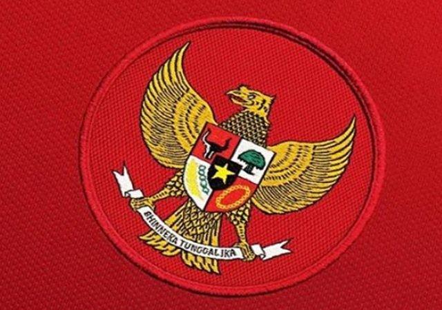 Timnas Putri Indonesia mundur dari Piala AFF U-15 2019 (Istimewa)