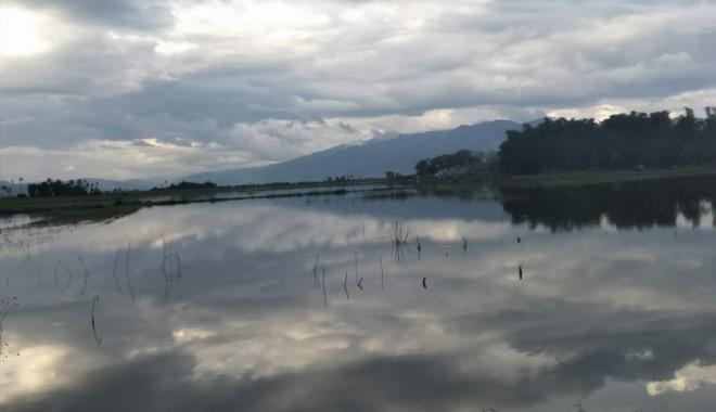Ratusan hektar sawah di Kerinci terandam banjir mengakibatkan sering gagal panen. Foto : Gusnadi / Jambiupdate