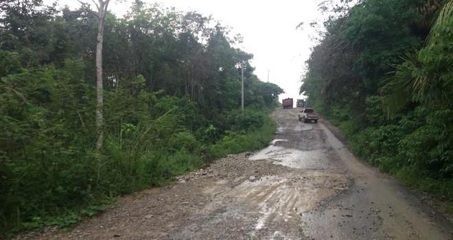 Kondisi jalan ke Pelepat Ilir yang hancur. Foto : Ist