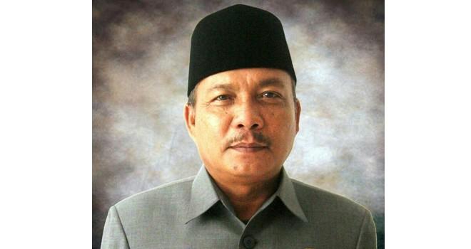 Wakil Ketua DPRD Muarojambi, Edison. Foto : Ist