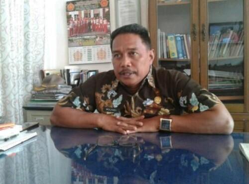 Kepala Dinas PMD Mulyadi