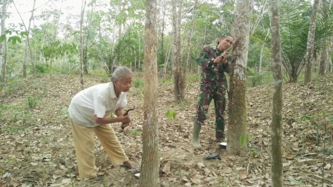 Serda Sahardi Babinsa Koramil 415-04/MB, saat bantu Tamini, warga RT 02 Desa Ladang Peris.