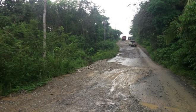 Kondisi jalan ke Pelepat Ilir yang rusak berat.