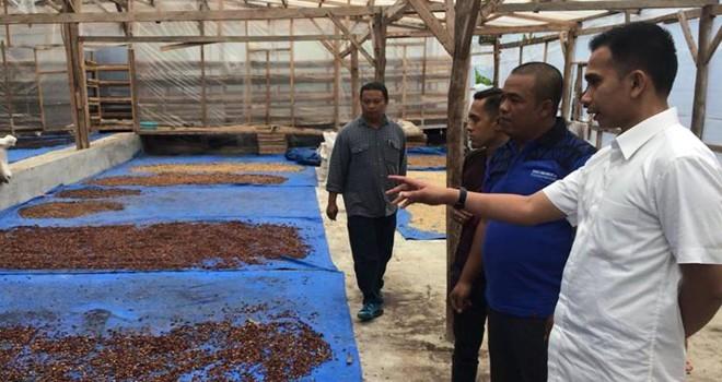Dipo Nurhadi Ilham (kanan) mengunjungi petani untuk berdialog terkiat pengembangan pertanian Kopi di Kota Sungai Penuh dan Kabupaten Kerinci.