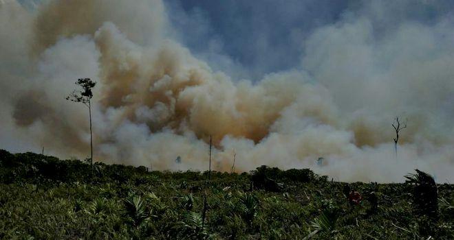 Satgas Karhutla memadamkan api yang membakar beberapa titik lahan di Kecamatan Sadu kemarin (18/8).
