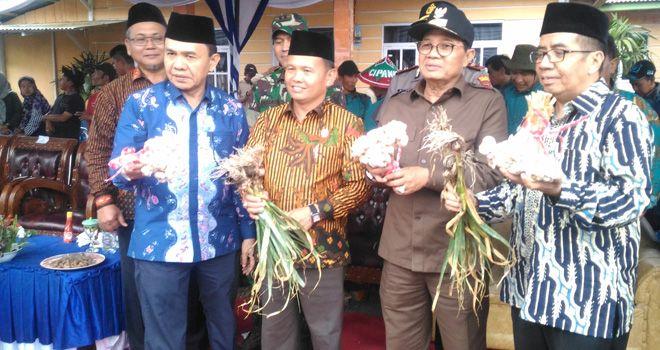Gubernur Jambi Fachrori Umar dan Bupati Kerinci hadir pada panen raya bawang di Kerinci beberapa waktu lalu.