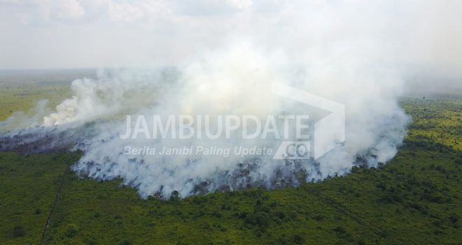 Kebakaran 23 Hektare Lahan di Dendang  beberapa waktu lalu.