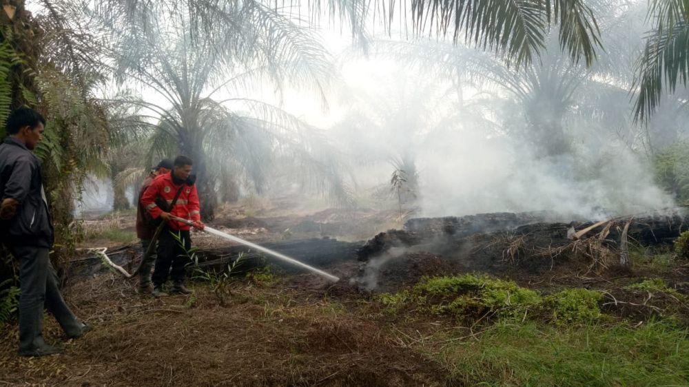 Karhutla di daerah Kabupaten Tanjung Jabung Timur.