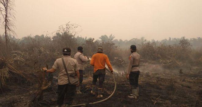 Proses pemadaman api kebakaran lahan oleh Tim Satgas Tanjabtim, beberapa waktu lalu.