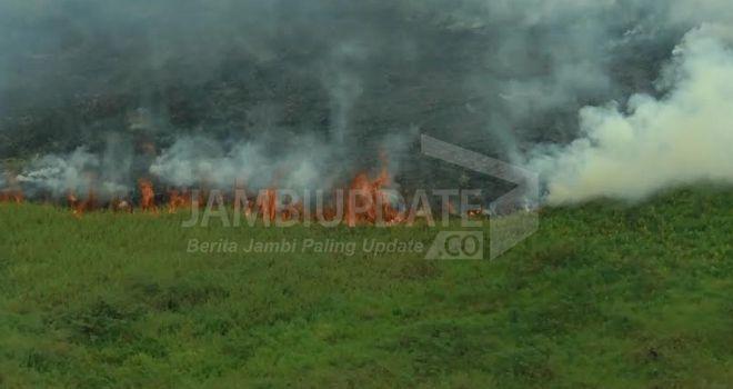 Kebakaran Hutan dan Lahan yang terjadi di Jambi beberapa waktu lalu.