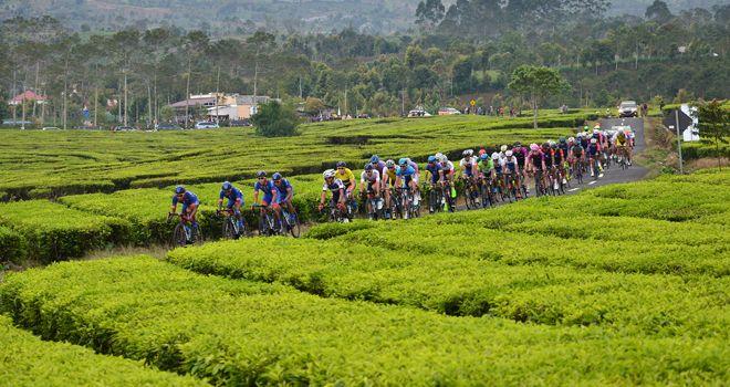 Pebalap Tour de Singkaran (TdS) 2019 melewati rute Kayu Aro-Danau Kerinci di etape VII. Rencananya tahun depan etape akan ditambah.