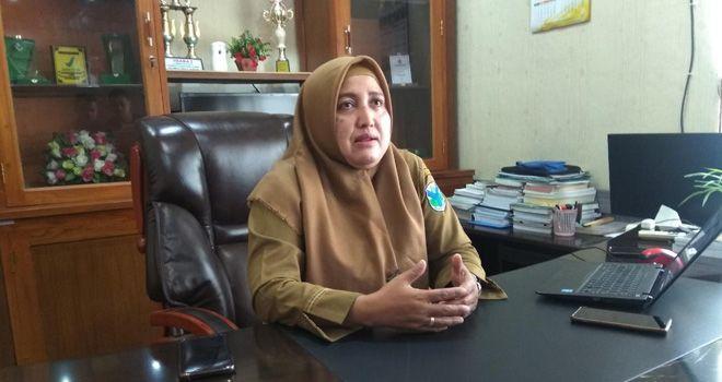 Kepala Dinas Kesehatan Kabupaten Batanghari dr. Elfie Yennie.