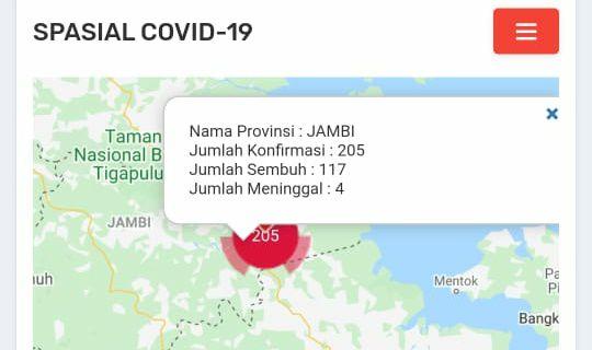 Tambah 12 Orang Positif Covid19, Total Kasus di Jambi Sudah Tembus Angka 205