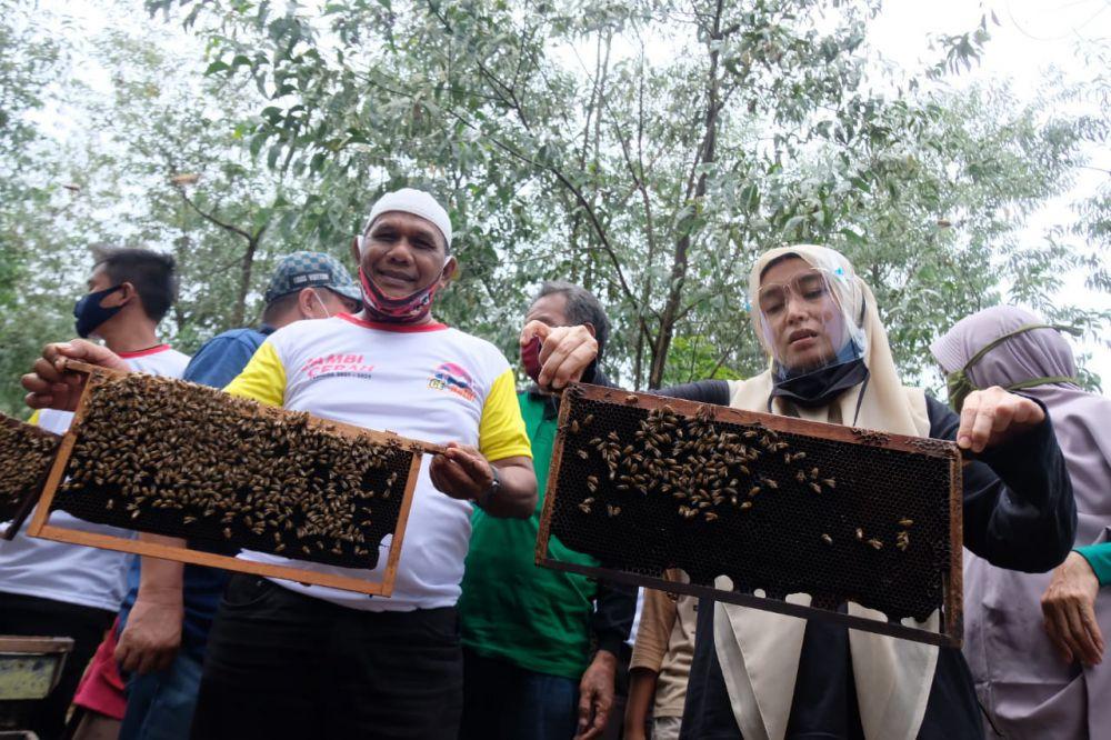 Ratu Ikut Panen Madu Lebah di Danau Lamo