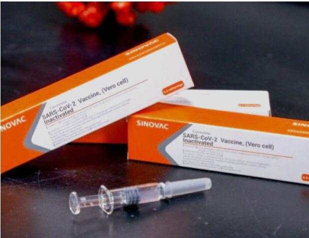 Ilustrasi vaksin Covid-19 buatan Sinovac. (Istimewa)